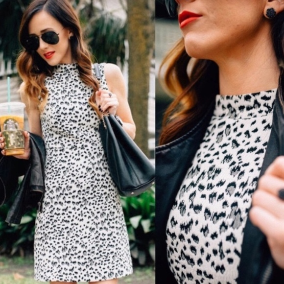 LOFT Dresses & Skirts - NWT LOFT black and white animal print dress